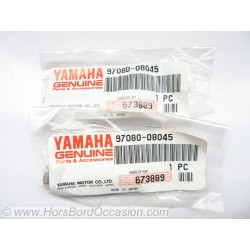 Vis de pompe à eau Yamaha 20CV F20