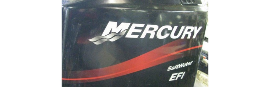 Mercury 175CV 2T